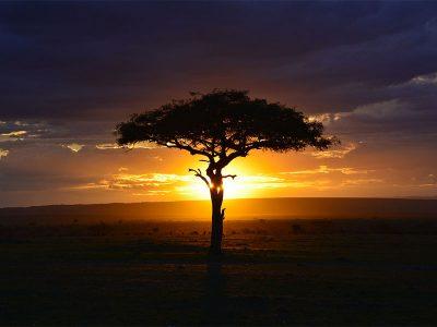 Tradizione orale africana